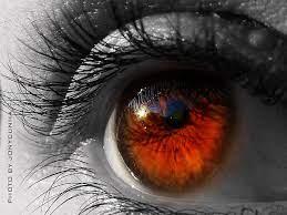 EBC   Como funciona o olho humano?